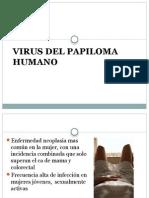Vacuna Hpv