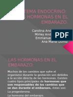 Las Hormonas en El Embarazo