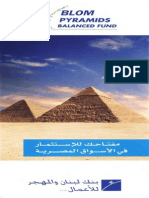 Pyramids Balance Fund 2010