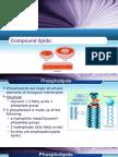 lipoproteins-