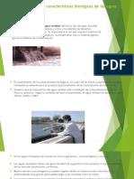 Importancia de Las Características Biológicas de Las Aguas