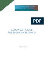 Anestesias Loco