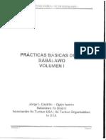 Practicas Basicas de Un Babalawo 01