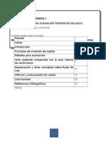 Resumen Unidad IV Principios de Inversión de Capital Mio