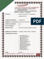 DHS Chimbote Contabilidad Rafael Charcape Fase Planificacion.