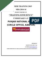 pnb training report.docx