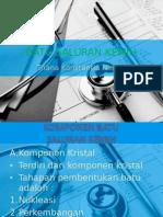 ppt urolitiasis