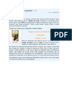 rezumat Singur pe lume.pdf