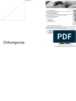 Chikungunya y Dengue