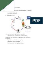 Amkilostomiasis