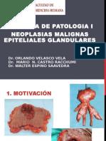Lab. Patologia - Neoplasia Malignas Glandulares