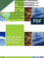 Deforestación de Areas Naturales
