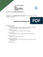 TGP - Trabalho - Principios Do Processo Civil