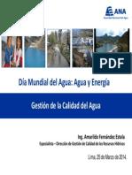 1. ANA - Amarildo Fernandez