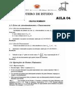 Roteiro de Estudo Cálculo Numérico 04