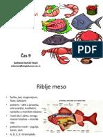 Riba i proizvodi od ribe.pdf