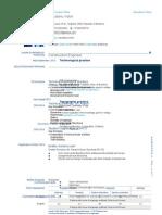 CV in Format European_en Final