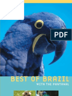 Best of Brazil with the Pantanal
