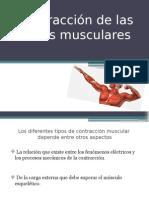 Contracción de Las Fibras Musculares