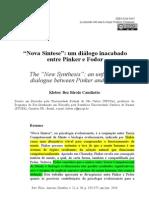 """Nova Síntese"""""""