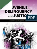 Delinquency Catalog