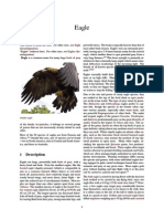 Eagle (Wiki)