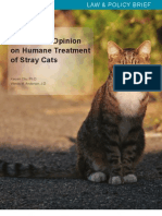 US Public Opinion on Humane Treatment of Stray Cats
