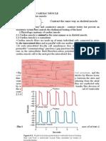 Physiology of Cardiac Muscle