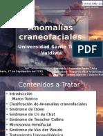 Anomalías Craneofaciales. Motricidad