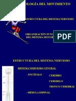 Presentación sobre La Neurofisiologia Del Movimiento