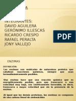 Presentación. enzimas