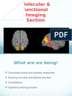 Molecular & Functional Imaging Group