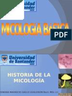 Historia de la Micologia