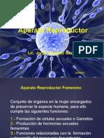 Sistema Reproductor Femenino