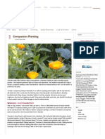 Companion Planting – Sustainable Gardening Australia • SGA _ Sustainable Gardening Australia.pdf