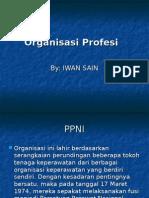 5-organisasi_ppni2.ppt