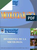Divisiones de la Micología