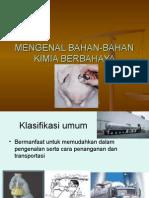 Mengenal Bahan Bahan Kimia Berbahaya2