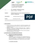 INFORME N° 01 -  QUEBRADA POTRERILLO 1- POTRERILLO-ftd-final