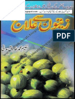 Zatoon I (Iqbalkalmati.blogspot.com)