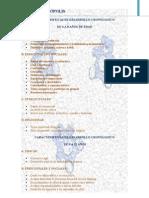 Caracteristicas de Desarrollo Cronologico