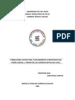 ATRIBUCIONES, ESTRUCTURA, FUNCIONAMIENTO E IMPORTANCIA DEL PODER JUDICIAL, A TRAVÉS DE LOS JUZGADOS DE POLICÍA LOCAL EN CHILE.doc