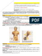 Sistemul Endocrin - Manual a XI A