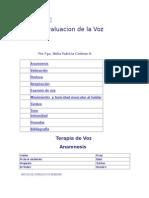 Evaluacion de La Voz