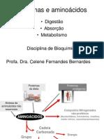 Digestao Proteinas Absorcao Metabolismo Aminoacidos