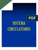 Clase Sistema Circulatorio
