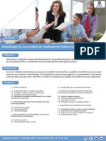 Metodologia FEL Como Analise de Viabilidade de Projetos
