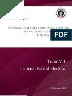 Tomo VII Tribunal Estatal Electoral.