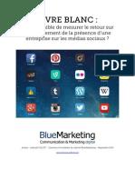Livre Blanc Le Retour Sur Investissement Des Medias Sociaux