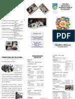 Folleto Presentacion Workshop Octubre 15